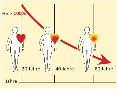 Q10 Grafik